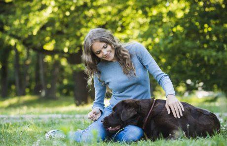 יתרונות בריאותיים בגידול כלבים